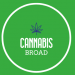 View cannabisbroad's profile.