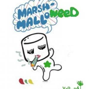 MarshmalloweeD's picture